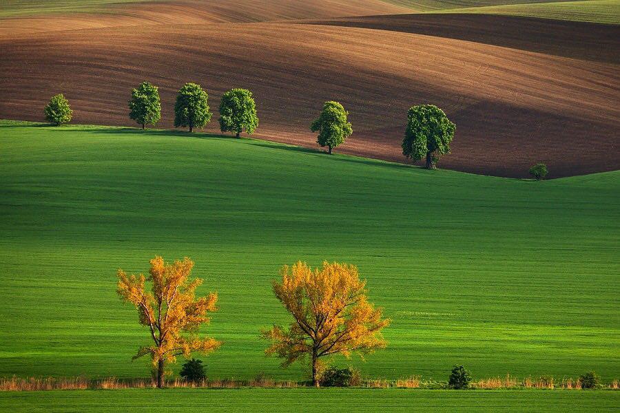 Южная Моравия. Чешская республика.